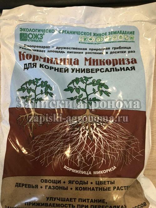 Растения и азот в почве