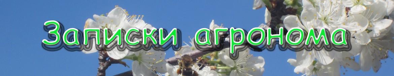 Логотип сайта zapiski-agronoma.ru