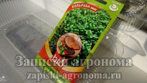 Сеем микрозелень