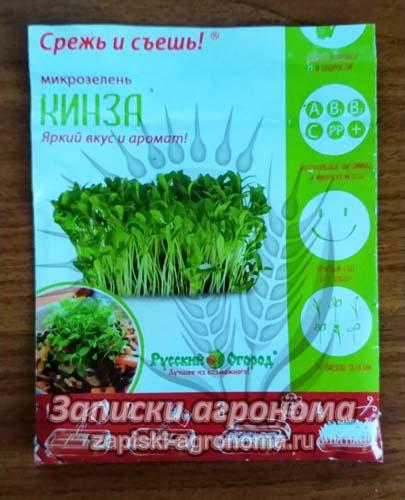 Кинза семена микрозелень