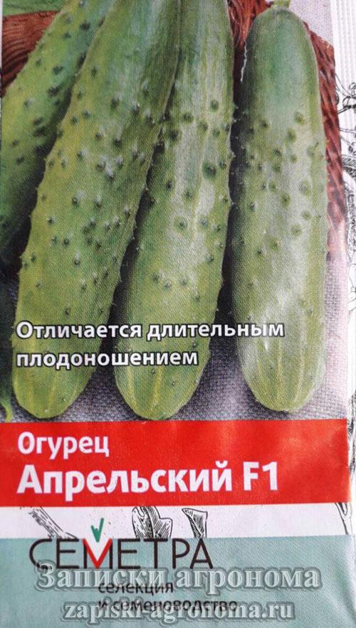 Пачка семян огурцов