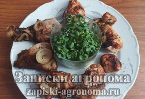 Аппетитная вкусная курочка с добавление микрозелени