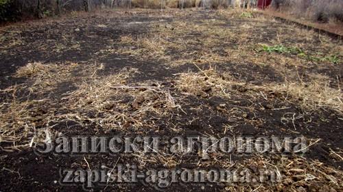 Подготовка огорода к зиме заделка в почву органических удобрений